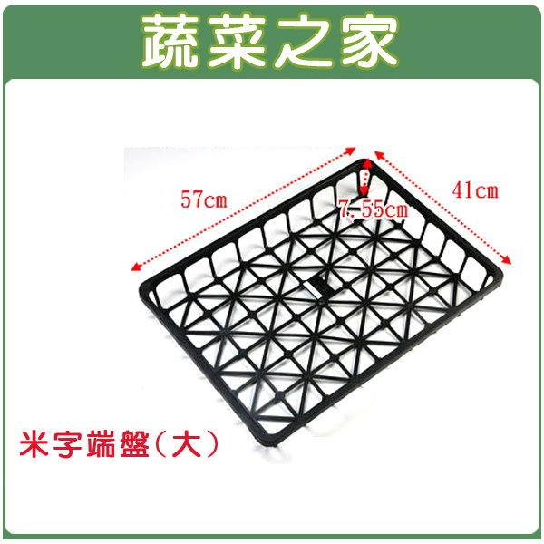 【蔬菜之家005-C04】米字端盤(大)長57cm*寬41cm*高7.55cm