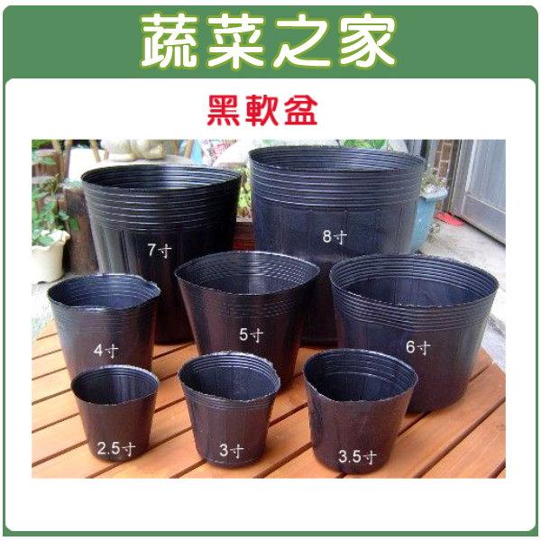 【蔬菜之家005-C55】6吋黑軟盆50個/組