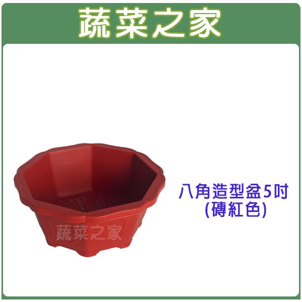 【蔬菜之家005-D109】八角造型盆5吋(磚紅色、棕色)