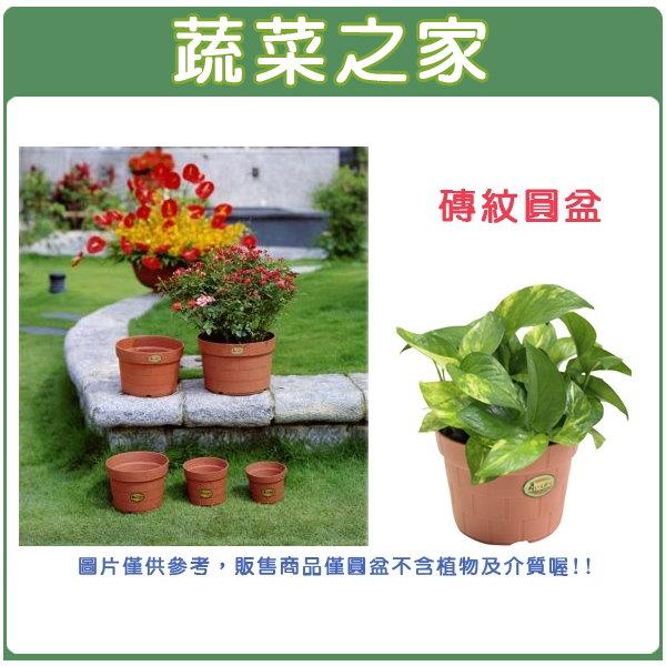 【蔬菜之家005-D41】6號磚紋圓盆14.6D*11.0H(CM)