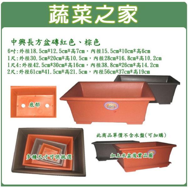 【蔬菜之家005-D86】中興6寸長方盆磚紅色、棕色