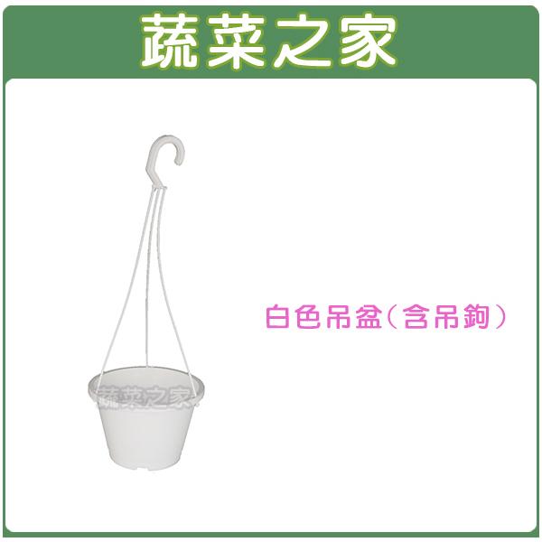 【蔬菜之家005-L019A】白色吊盆6寸(含吊繩)