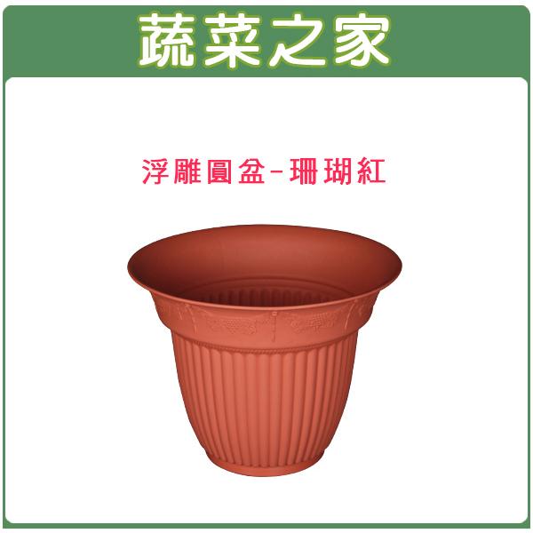 【蔬菜之家005-ROD606】6寸浮雕圓盆-珊瑚紅(無孔.有預留孔.也可自行打孔)