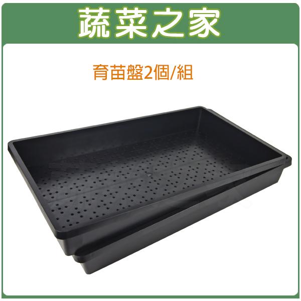 【蔬菜之家005-C86】育苗箱 2個/組(育苗盤.芽菜箱.可當四方型栽培盆端盤)