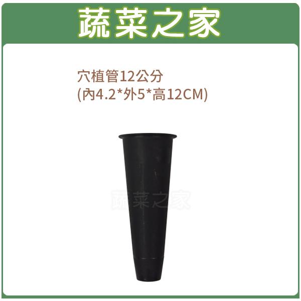【蔬菜之家005-C89-12】穴植管12公分(內4.2*外5*高12CM