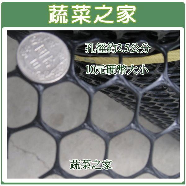 【蔬菜之家012-F01】萬能網(籬笆網)--3尺*100尺