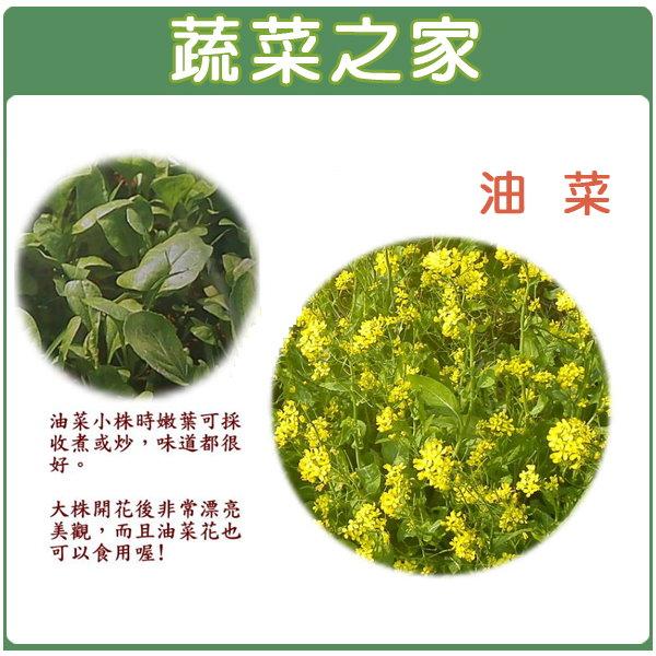 【蔬菜之家】A16.油菜種子10000顆