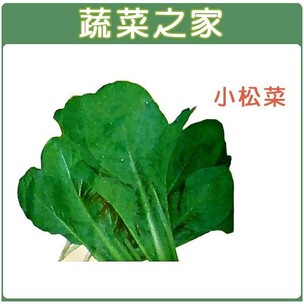 【蔬菜之家】A25.小松菜種子 (日本時次郎)350顆