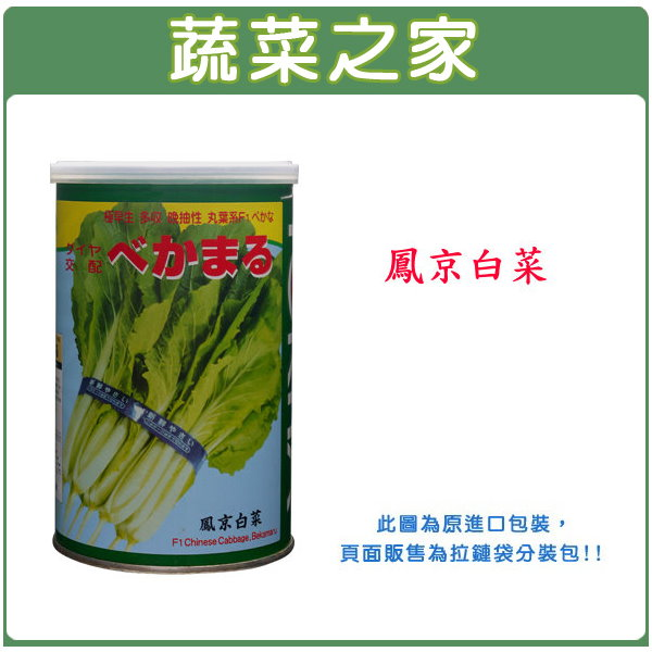 【蔬菜之家】A35.鳳京白菜種子750顆