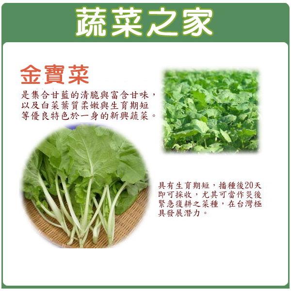 【蔬菜之家】A36.金寶菜種子500顆