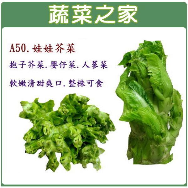 【蔬菜之家】A50.娃娃芥菜種子500顆