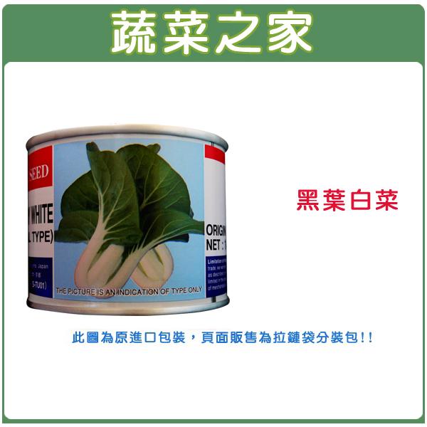 【蔬菜之家】A70.黑葉白菜種子