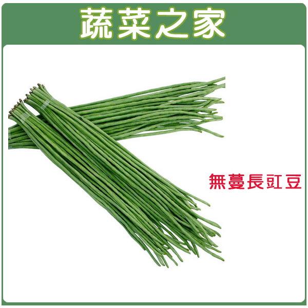 【蔬菜之家】E10.無蔓長豇豆(咖啡仁菜豆)種子50顆