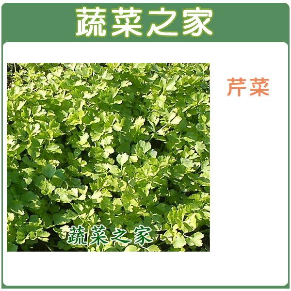 【蔬菜之家】F03.芹菜 (田尾種)種子15000顆
