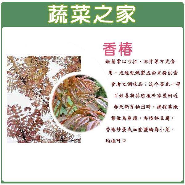 【蔬菜之家】F10.香椿種子50顆