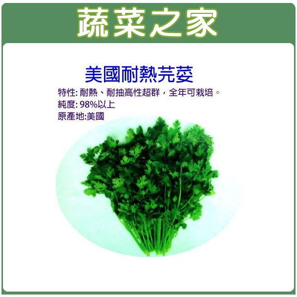 【蔬菜之家】F12.美國芫荽(美國進口耐熱品種香菜) 種子 200顆