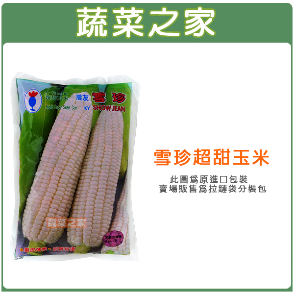 【蔬菜之家G85】雪珍超甜玉米(純白色)種子