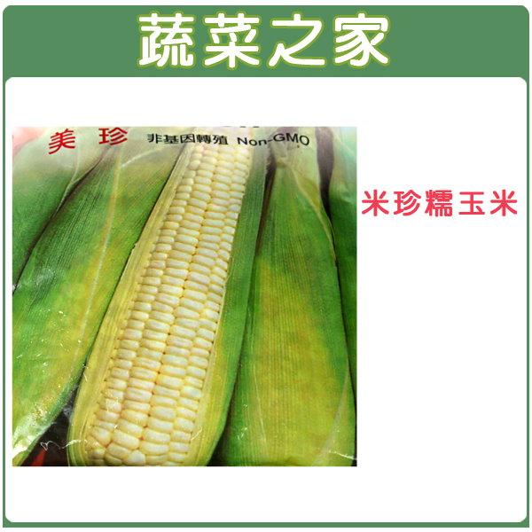 【蔬菜之家】G05.糯玉米(美珍)種子 20顆