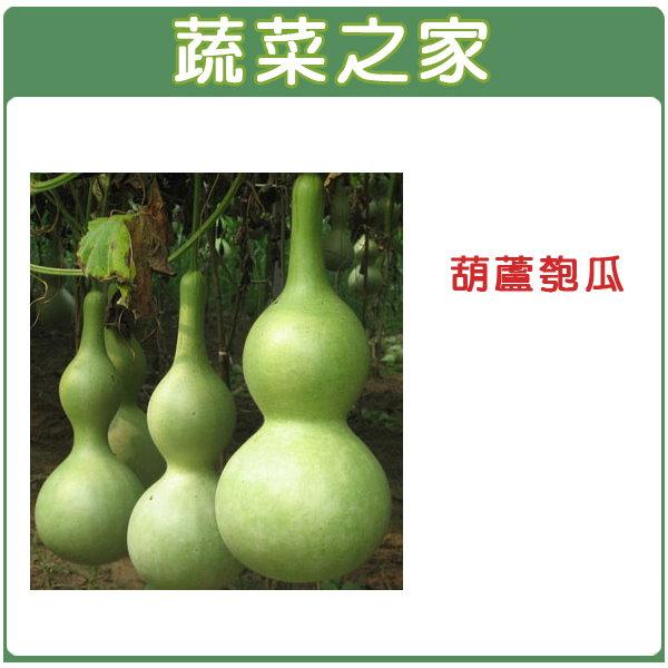 【蔬菜之家】G32.葫蘆匏瓜種子10顆