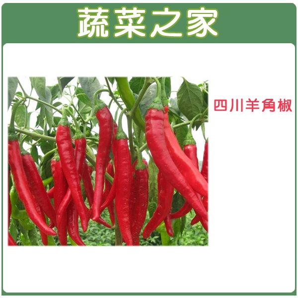 【蔬菜之家】G37.四川羊角椒種子80顆(一般辣度辣椒)