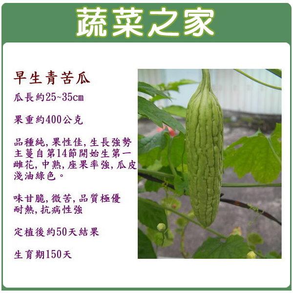 【蔬菜之家】G41.早生青苦瓜種子1顆
