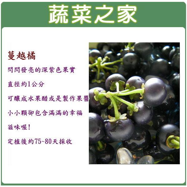 【蔬菜之家】G56.蔓越橘種子5顆