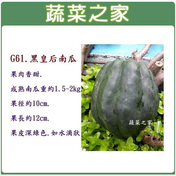 【蔬菜之家】G61.黑皇后南瓜(果肉香甜)5顆