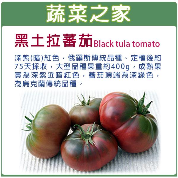 【蔬菜之家】G66.黑土拉蕃茄種子5顆