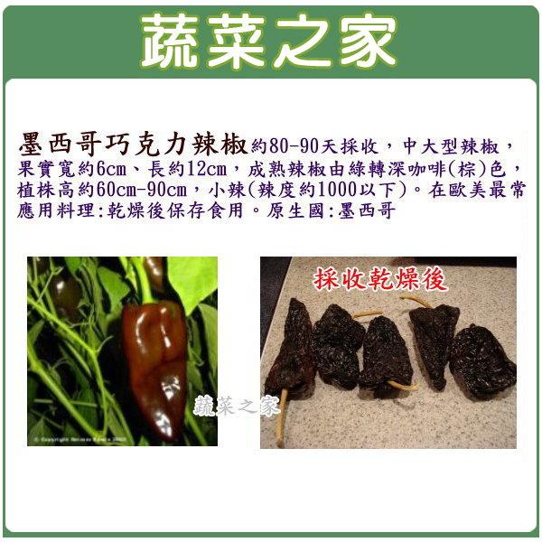 【蔬菜之家】G68墨西哥辣椒種子3顆