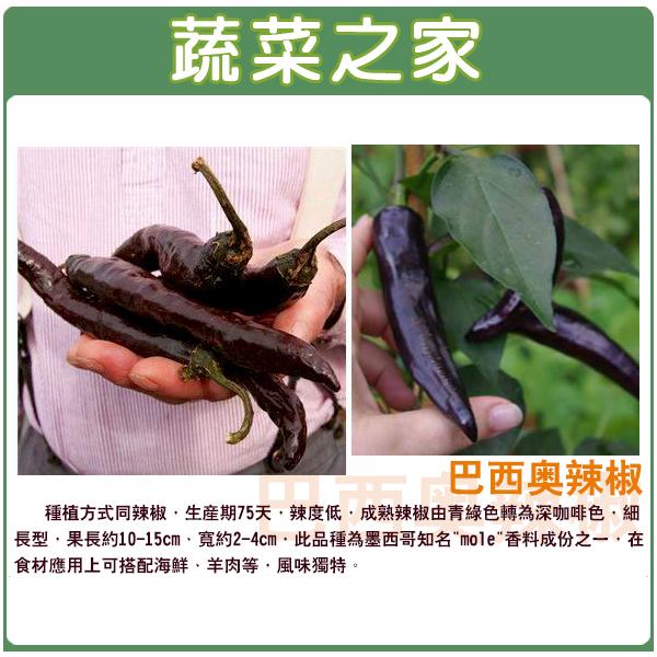 【蔬菜之家】G94.巴西奧辣椒種子5顆
