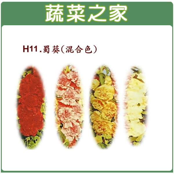 【蔬菜之家】H11.蜀葵(混合色,高150cm)種子20顆