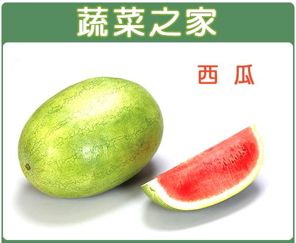 【蔬菜之家】I01.西瓜種子5顆