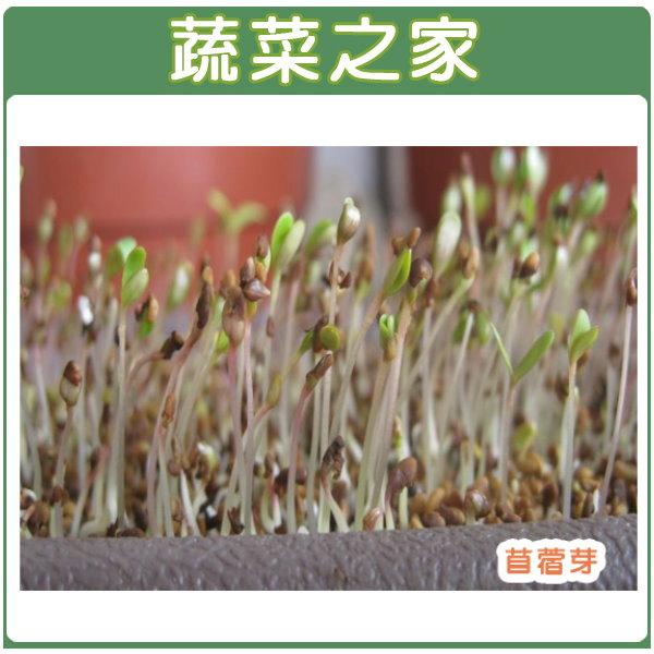 【蔬菜之家】J01.苜宿(芽菜種子)種子7000顆