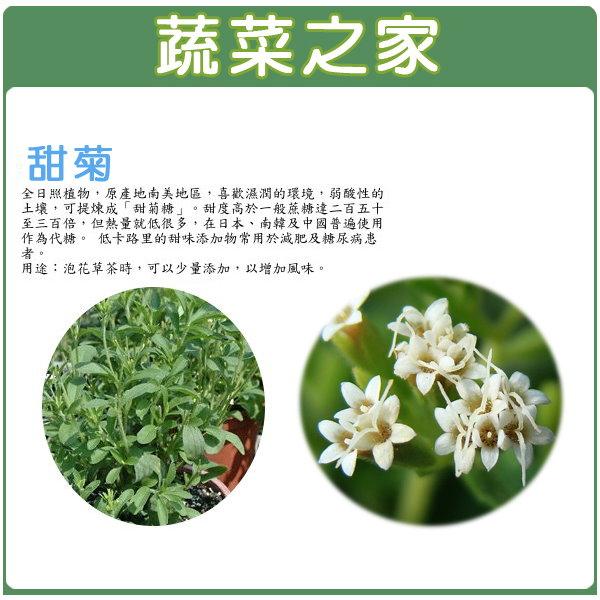 【蔬菜之家】K18.甜菊種子2顆