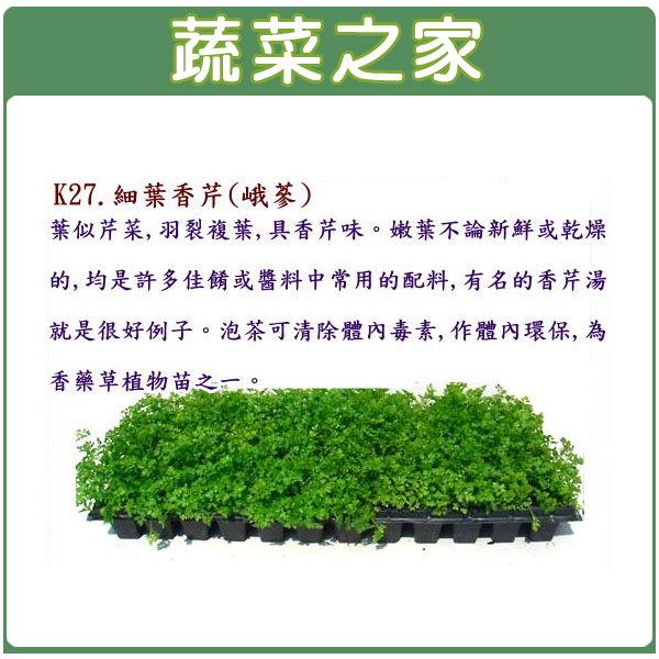 【蔬菜之家】K27.細葉香芹種子(峨蔘)1200顆