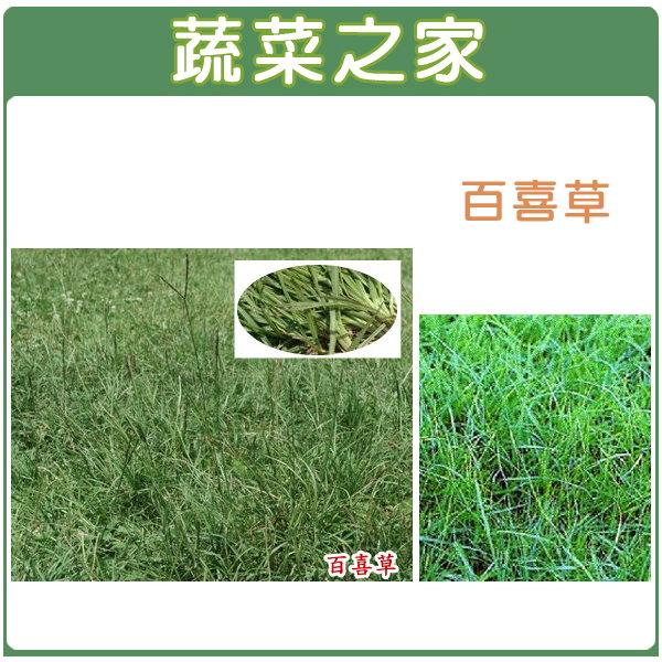 【蔬菜之家】M01.百喜草種子5000顆