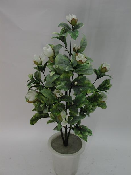 ★超低價★2.5尺 洋玉蘭-乳白 / 塑膠樹幹人造樹 空間 景觀 佈置 造景