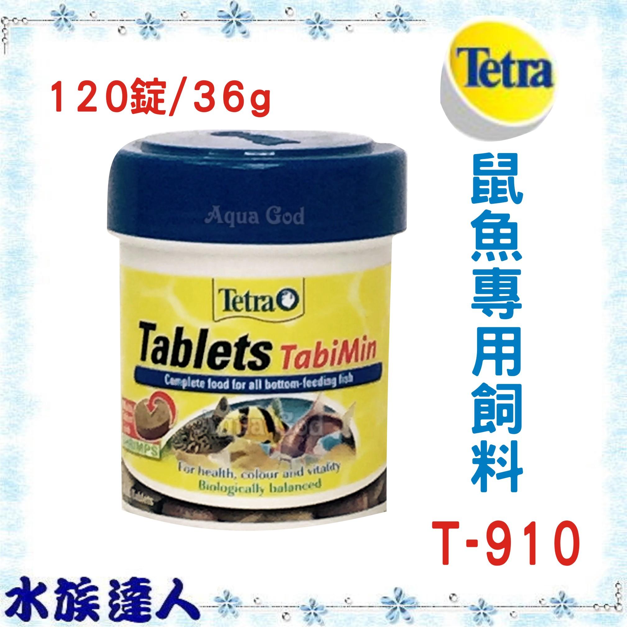 【水族達人】德彩Tetra《鼠魚專用飼料120錠 T910》專為底棲魚、鼠魚需求設計