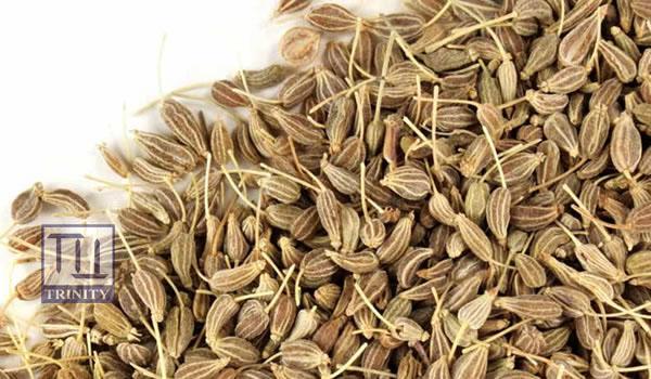 Anise Seed 大茴香子