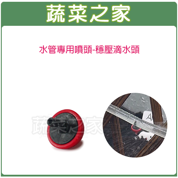 【蔬菜之家007-B59】水管專用噴頭-穩壓滴水頭(每小時約2公升)