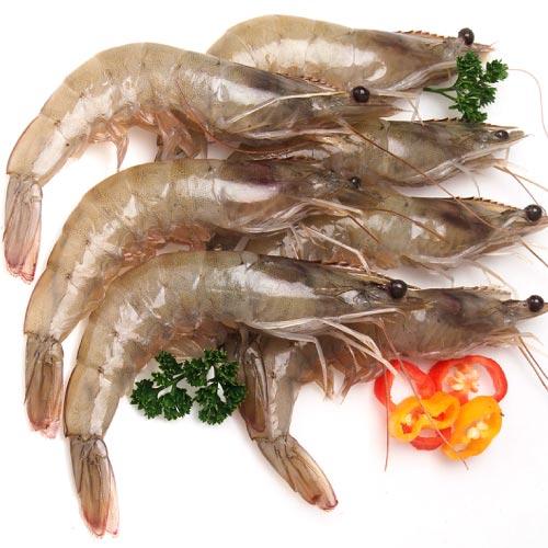 【築地藏鮮】南美鮮凍白蝦 (1.2Kg/盒)1盒約60~70尾