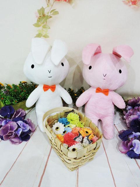 ~*MY  71*~ 絨毛娃娃 30cm妮妮兔 可愛 兔子 玩偶 蠟筆小新 妮妮 兔子 兒童 玩具 禮物