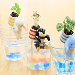 美麗大街【BF261E6E864】正品創意可愛極地小動物尾巴吸水迷你水培植物小盆栽桌面小植栽