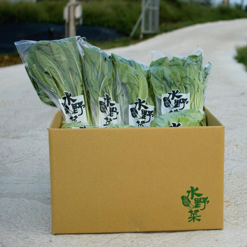 『水野菜』無農藥蔬菜箱 10包組 (含運) 隨機出貨