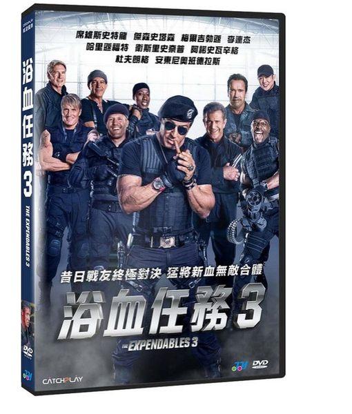 浴血任務3 DVD The Expendables 3 (音樂影片購)