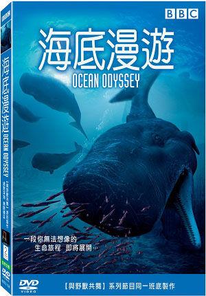 海底漫遊 DVD Ocean Odyssey電腦動畫深海世界抹香鯨一生大西洋虎鯨群巨槍烏賊長皇帶魚