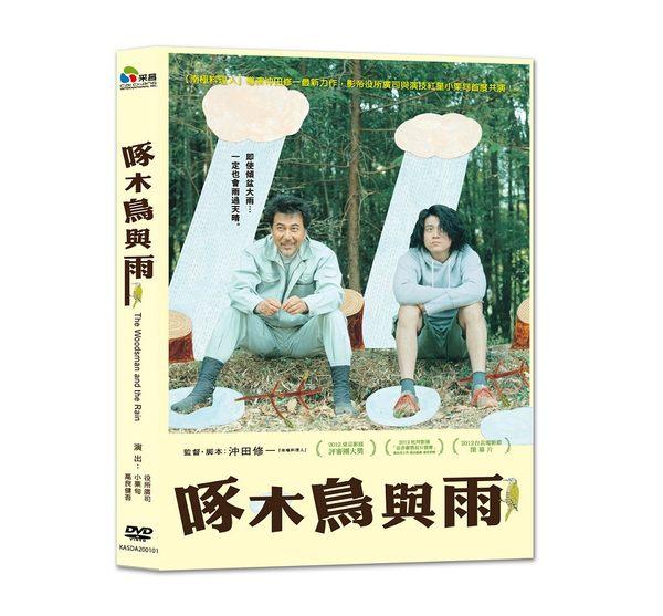 啄木鳥與雨 DVD (音樂影片購)