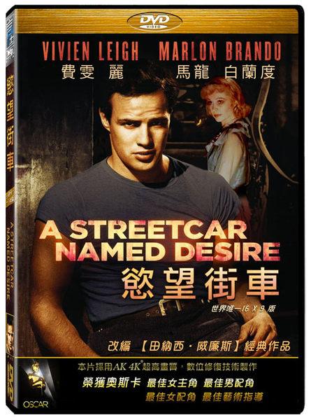 慾望街車 DVD 免運費 (音樂影片購)