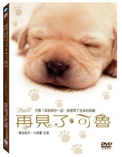 再見了,可魯 DVD Quill 崔洋一 椎名桔平 小林薰 23億日圓票房 感人 溫馨 (音樂影片購)