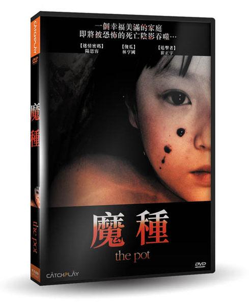 魔種 DVD The Pot 迷情密碼陽恩容 傻瓜林亨國 追擊者崔正宇 金泰坤 恐怖驚悚 (音樂影片購)